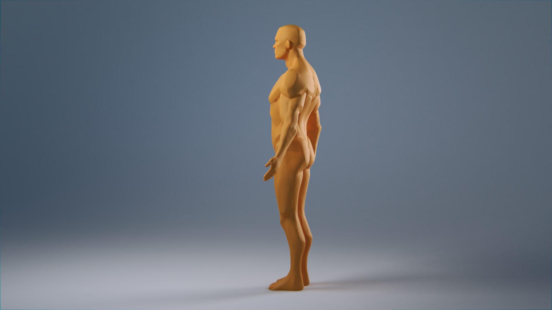 anatomy_wip_0025