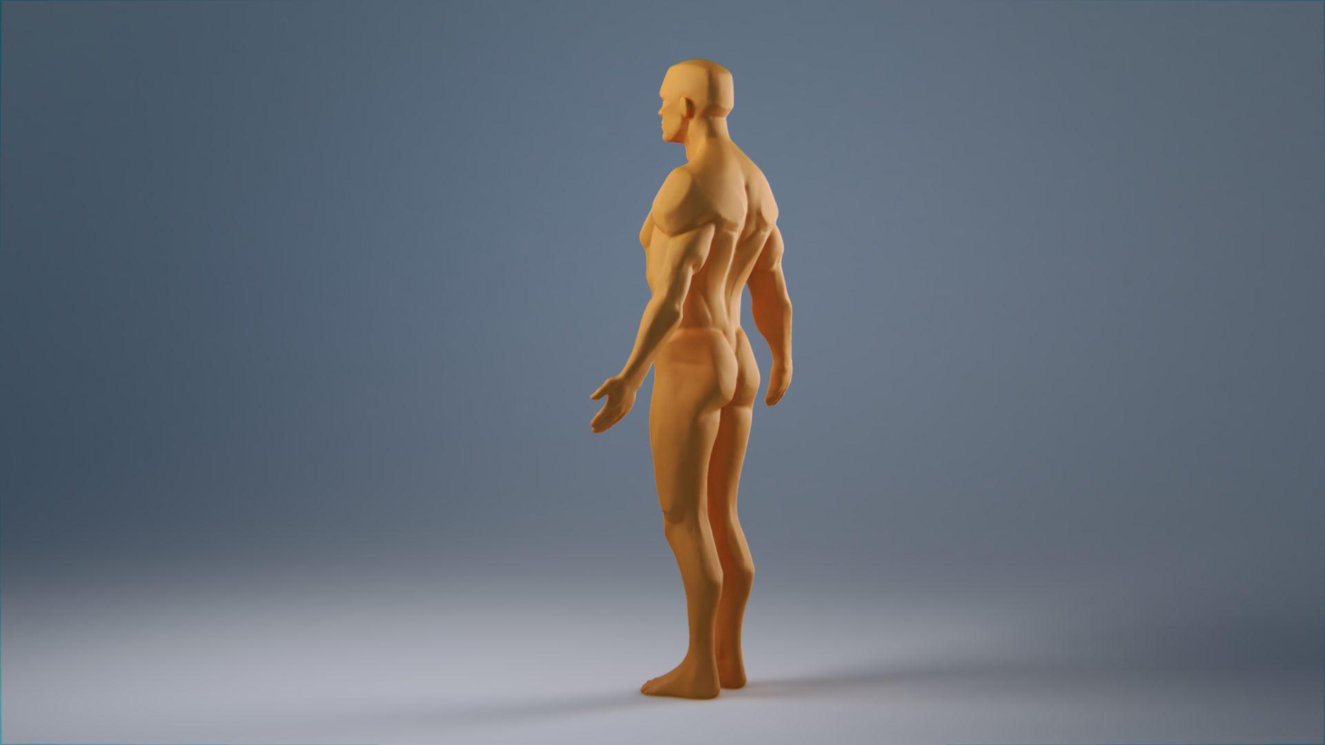 anatomy_wip_0029