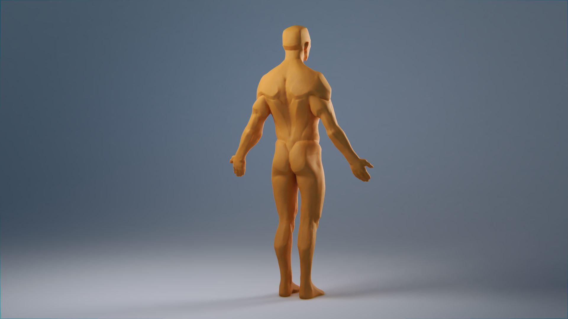 anatomy_wip_0053