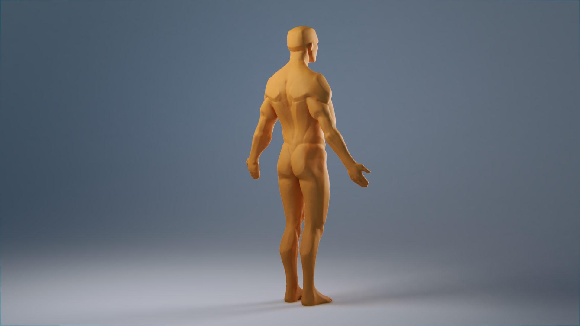 anatomy_wip_0057