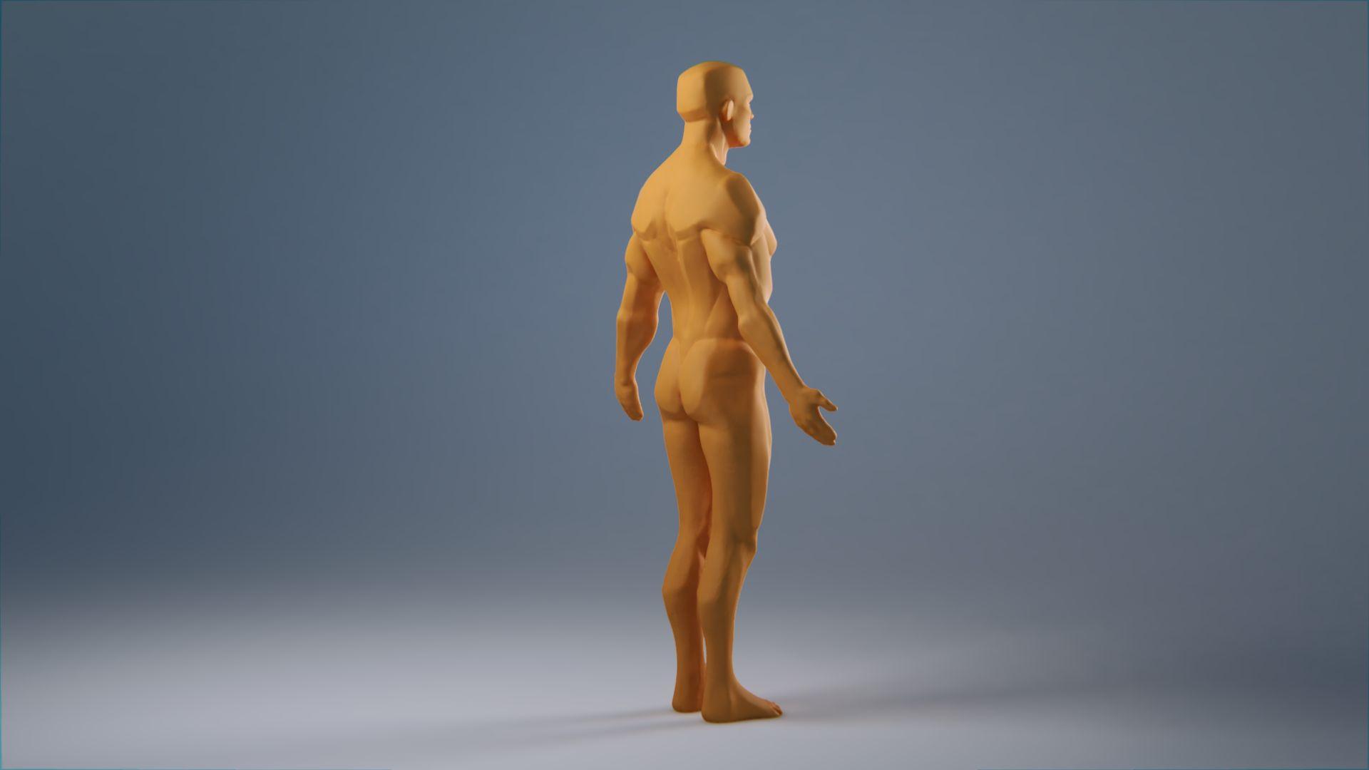 anatomy_wip_0061