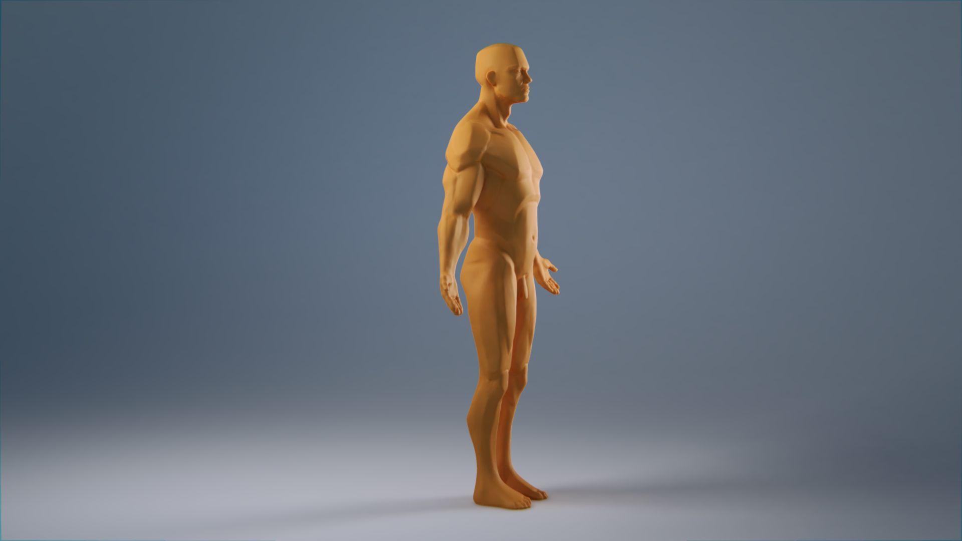 anatomy_wip_0077